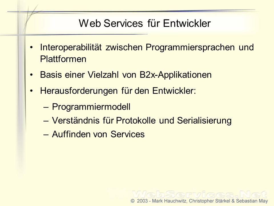 Web Services für Entwickler Interoperabilität zwischen Programmiersprachen und Plattformen Basis einer Vielzahl von B2x-Applikationen Herausforderungen für den Entwickler: –Programmiermodell –Verständnis für Protokolle und Serialisierung –Auffinden von Services
