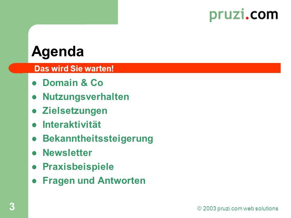 © 2003 pruzi.com web solutions 3 Agenda Domain & Co Nutzungsverhalten Zielsetzungen Interaktivität Bekanntheitssteigerung Newsletter Praxisbeispiele F