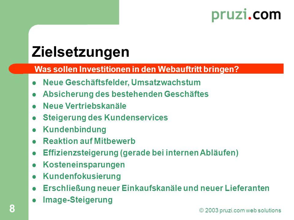 © 2003 pruzi.com web solutions 8 Zielsetzungen Neue Geschäftsfelder, Umsatzwachstum Absicherung des bestehenden Geschäftes Neue Vertriebskanäle Steige