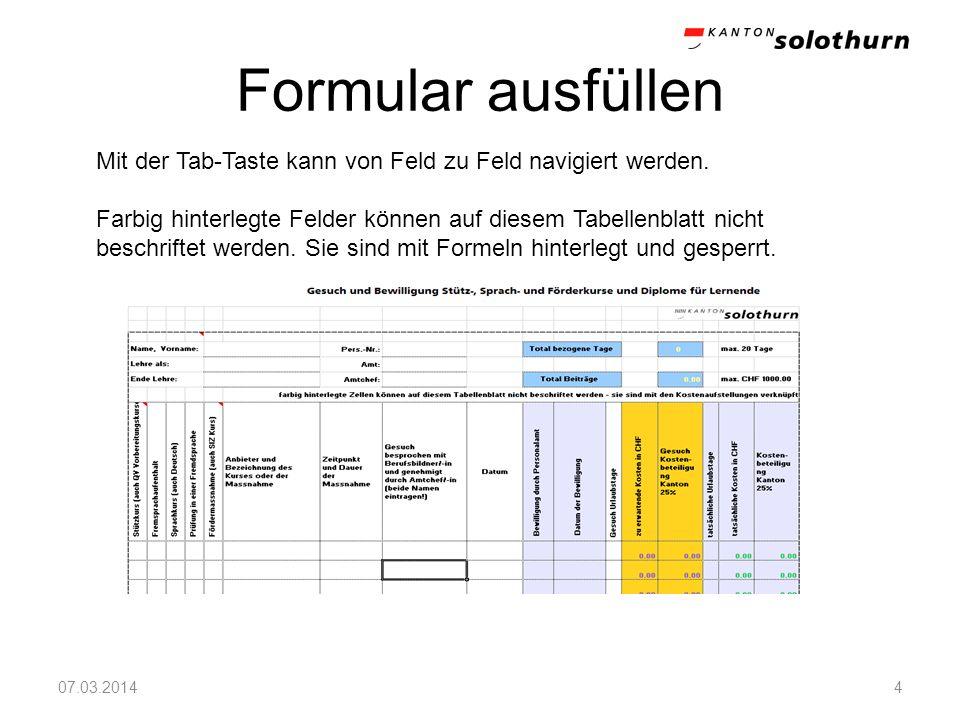 Formular ausfüllen 07.03.20144 Mit der Tab-Taste kann von Feld zu Feld navigiert werden. Farbig hinterlegte Felder können auf diesem Tabellenblatt nic