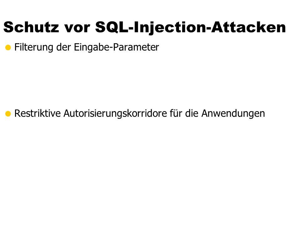 Schutz vor SQL-Injection-Attacken Filterung der Eingabe-Parameter Restriktive Autorisierungskorridore für die Anwendungen