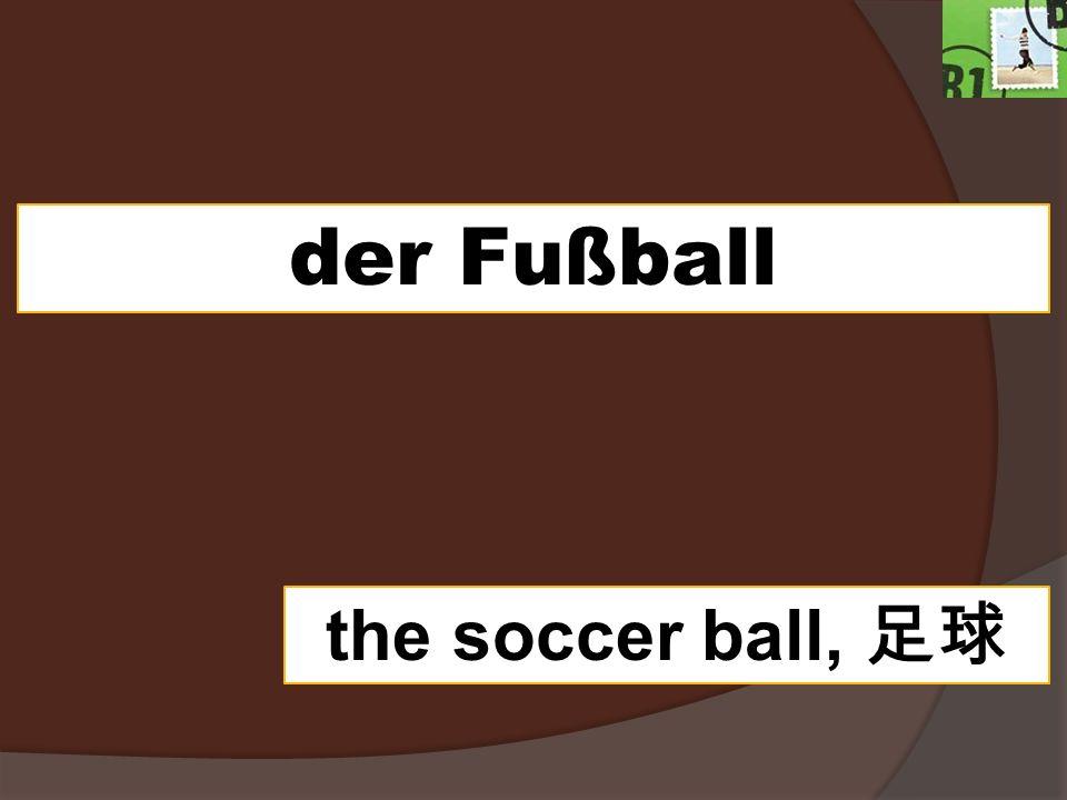 der Fußball the soccer ball,