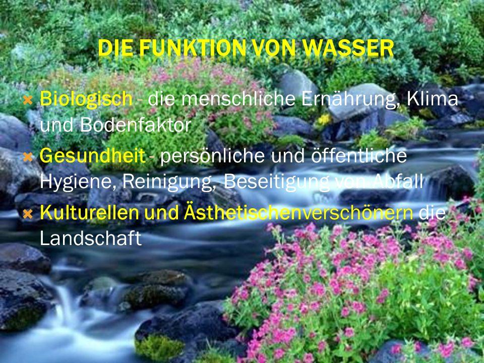Biologisch - die menschliche Ernährung, Klima und Bodenfaktor Gesundheit - persönliche und öffentliche Hygiene, Reinigung, Beseitigung von Abfall Kult