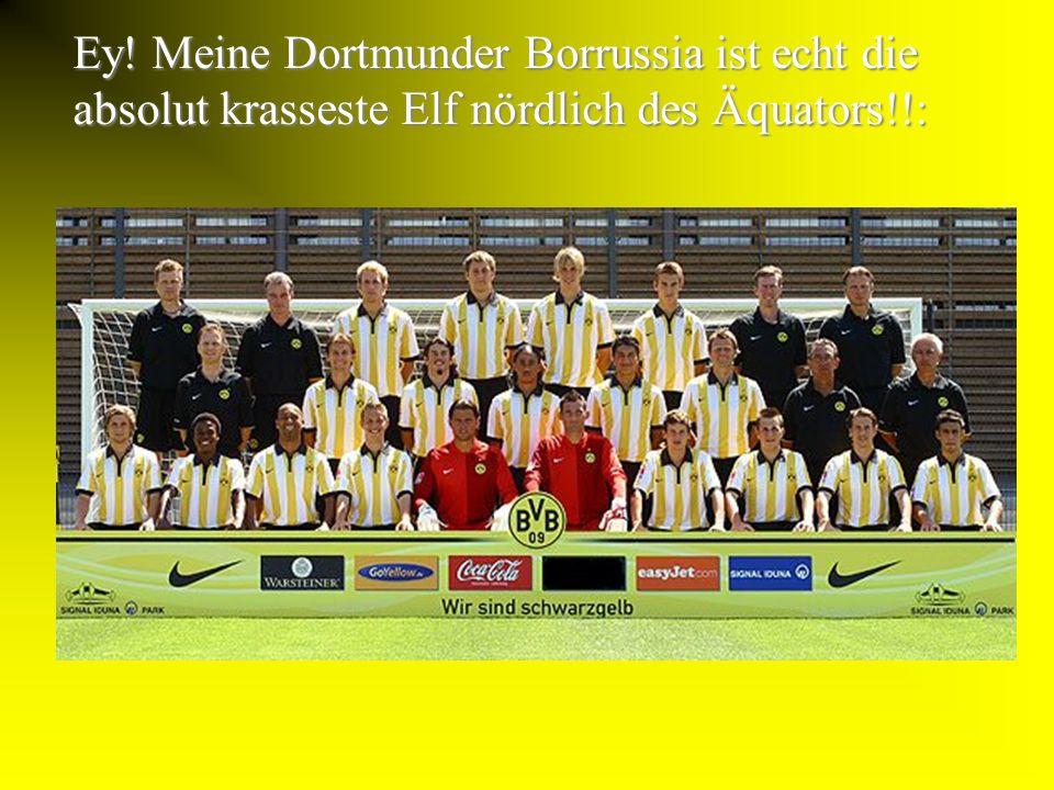 HA HA!! REINGEFALLEN!! Natürlich ist der BVB(BallsportVerein Borrussia) ein sensationell krasser Fußballverein der deutschen Bundesliga!!!!!!!!! ein s