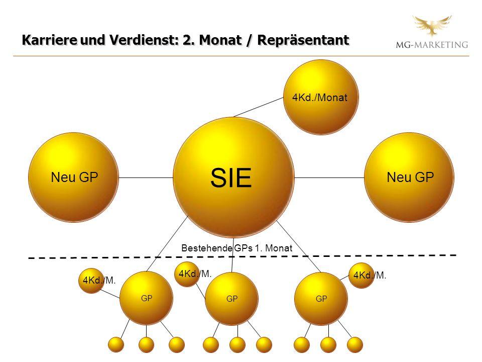 Karriere und Verdienst: 2.Monat / Repräsentant SIE GP 4Kd./Monat GP Neu GP Bestehende GPs 1.