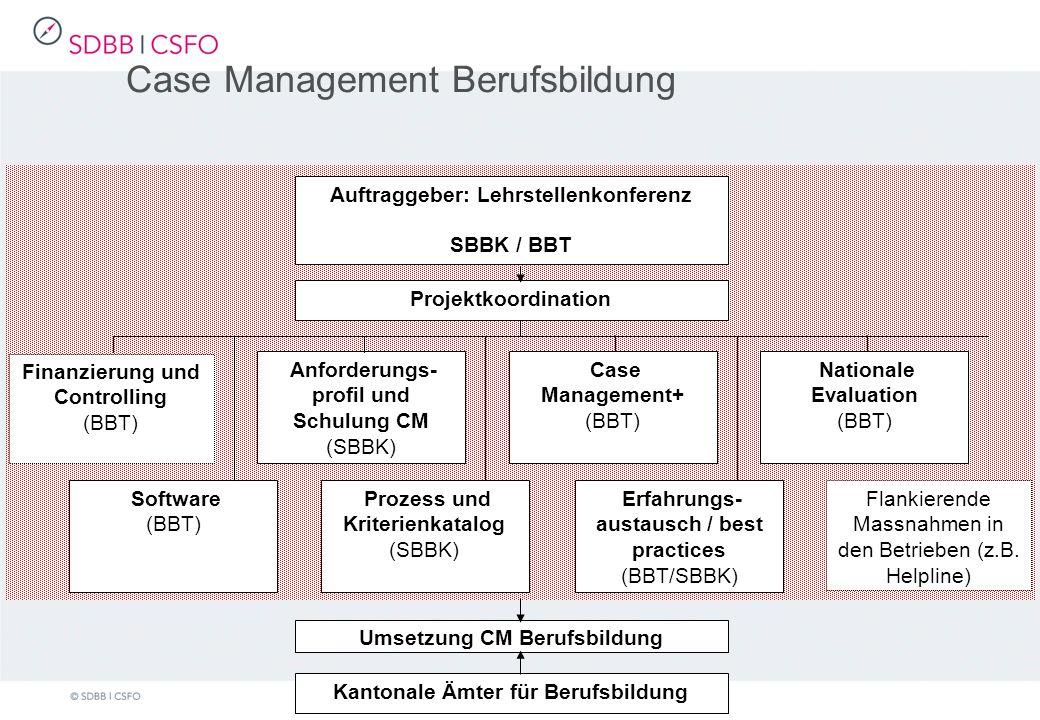 Case Management Berufsbildung Auftraggeber: Lehrstellenkonferenz SBBK / BBT Software (BBT) Finanzierung und Controlling (BBT) Anforderungs- profil und Schulung CM (SBBK) Prozess und Kriterienkatalog (SBBK) Case Management+ (BBT) Erfahrungs- austausch / best practices (BBT/SBBK) Nationale Evaluation (BBT) Flankierende Massnahmen in den Betrieben (z.B.