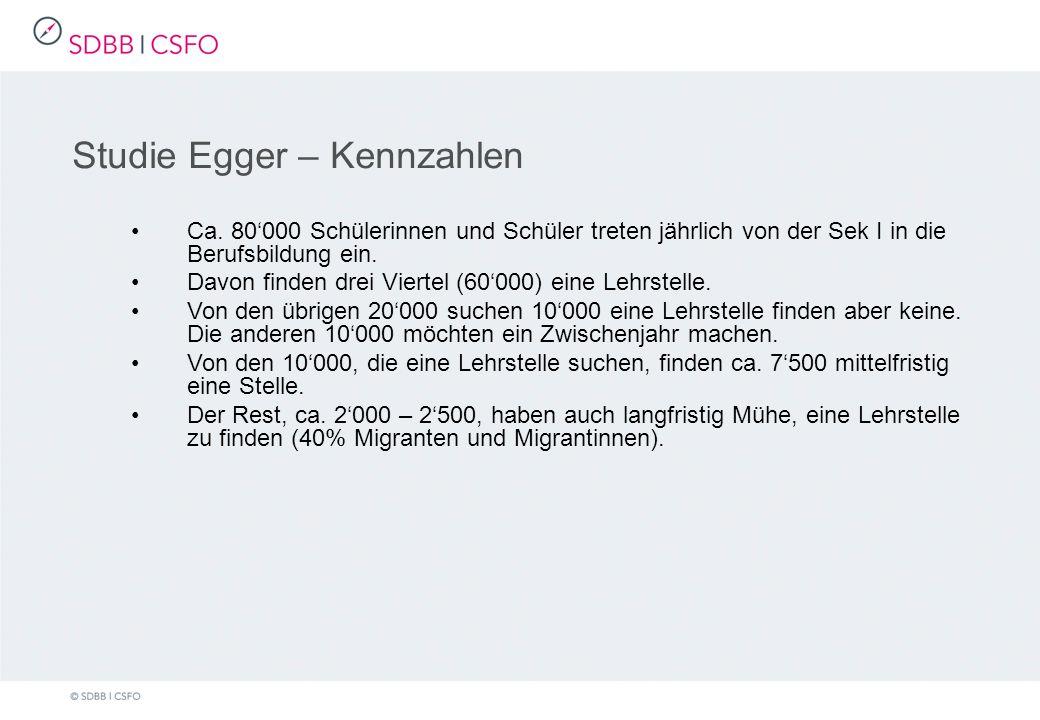 Studie Egger – Kennzahlen Ca.