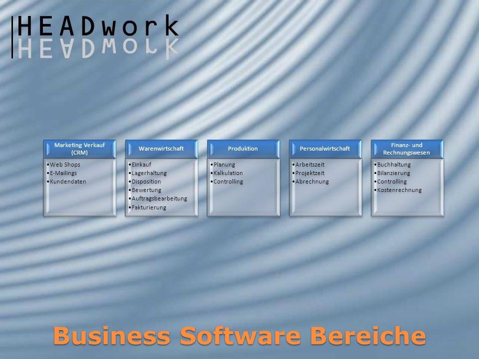 Business Software Integration Bestandssoftware StandardsoftwareIndividualsoftware