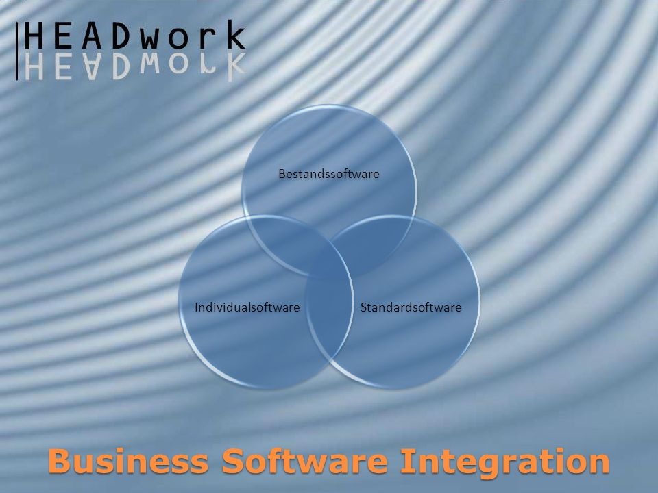 Business Software Integration Bestandssoftware StandardsoftwareIndividualsoftware