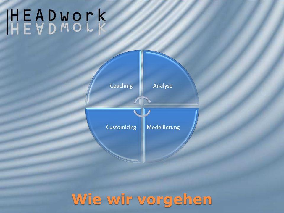 Wie wir vorgehen CoachingAnalyse ModellierungCustomizing