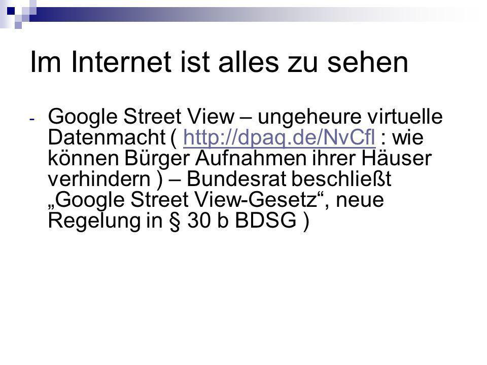 Im Internet ist alles zu sehen - Google Street View – ungeheure virtuelle Datenmacht ( http://dpaq.de/NvCfl : wie können Bürger Aufnahmen ihrer Häuser