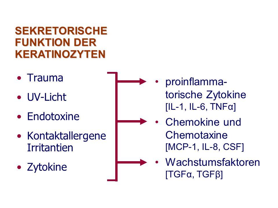 Trauma UV-Licht Endotoxine Kontaktallergene Irritantien Zytokine proinflamma- torische Zytokine [IL-1, IL-6, TNFα] Chemokine und Chemotaxine [MCP-1, I