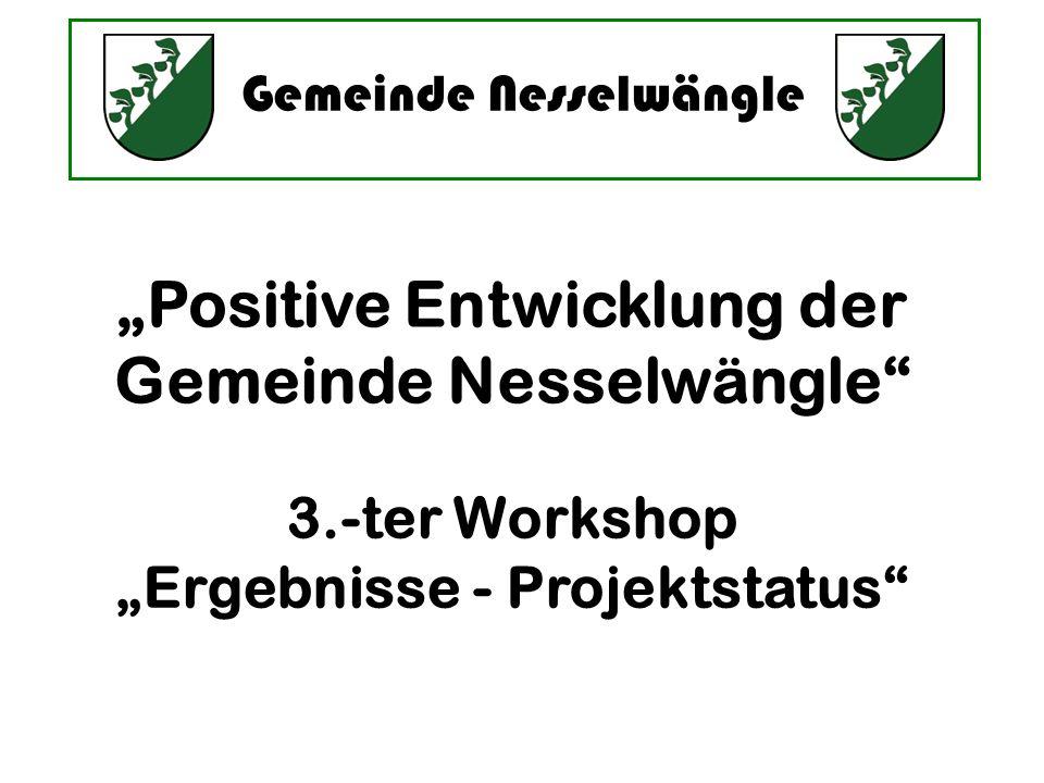 Gemeinde Nesselwängle Positive Entwicklung der Gemeinde Nesselwängle 3.-ter Workshop Ergebnisse - Projektstatus