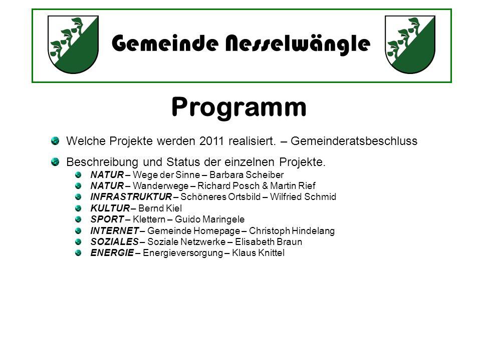Gemeinde Nesselwängle Programm Welche Projekte werden 2011 realisiert. – Gemeinderatsbeschluss Beschreibung und Status der einzelnen Projekte. NATUR –