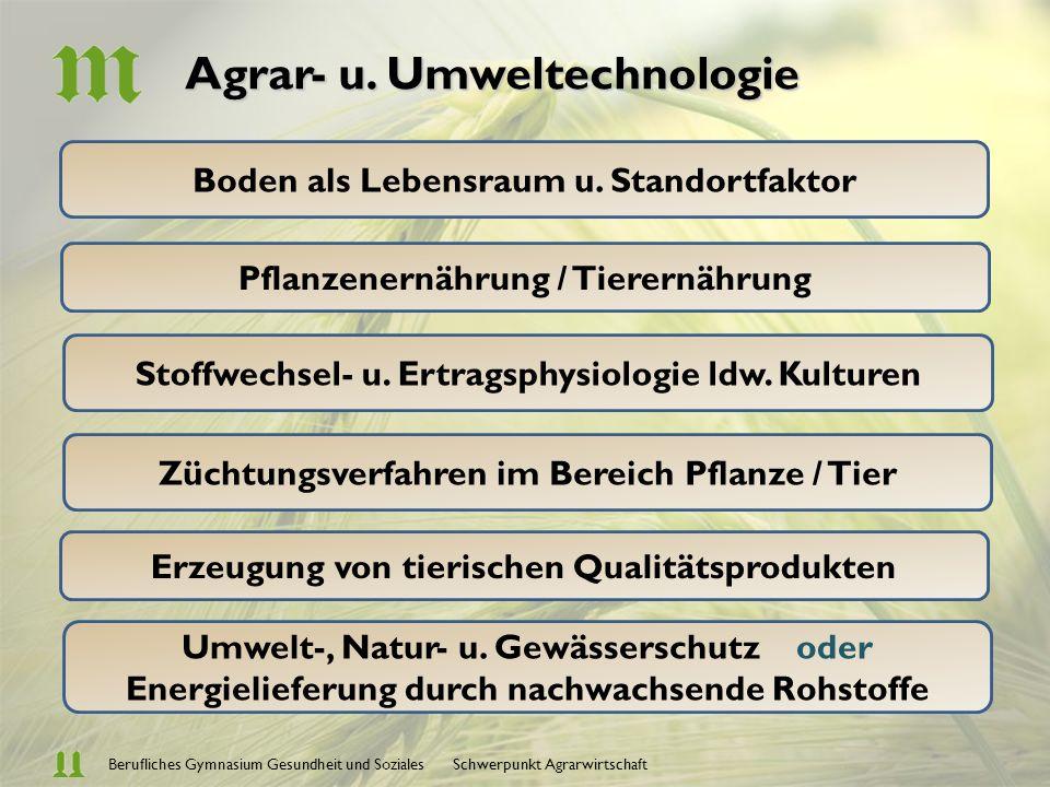 Berufliches Gymnasium Gesundheit und Soziales Schwerpunkt Agrarwirtschaft Agrar - und Umwelt- technologie Praxis Betriebs – und Volkswirtschaft Informations- verarbeitung Ein Profil aus einem Guss !