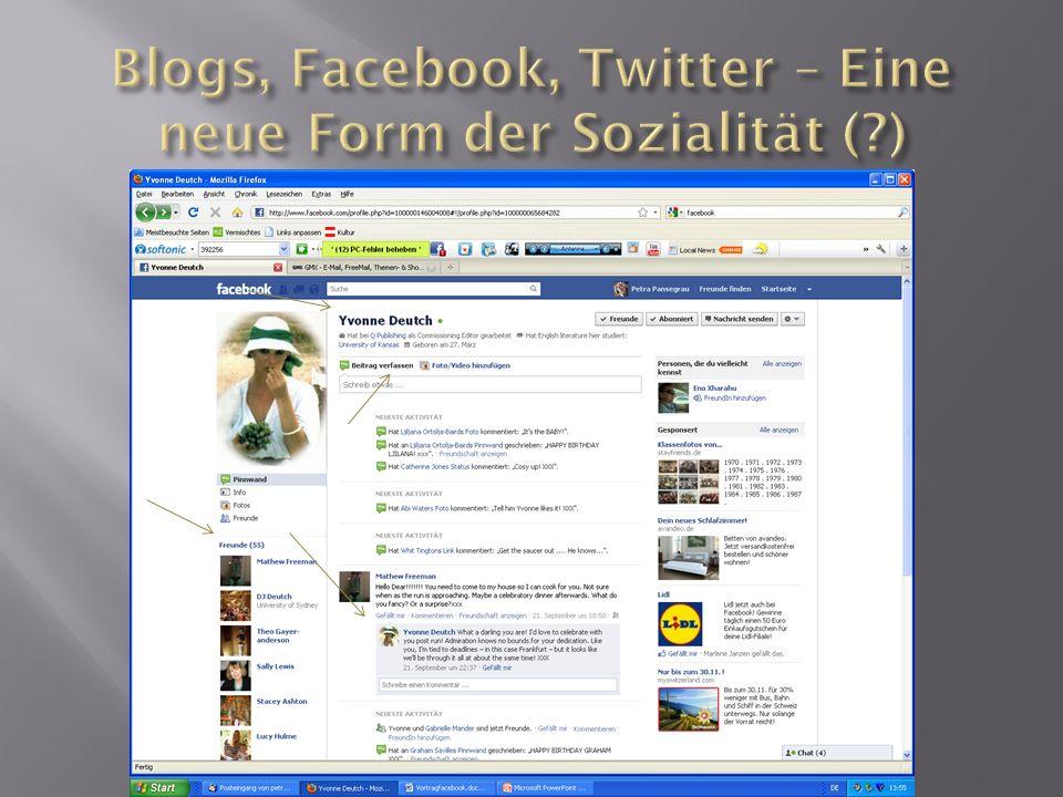 Flickr Portal, das digitale Bilder /Videos mit Kommentaren und Notizen präsentiert und anderen Nutzern zur Verfügung stellt ca.