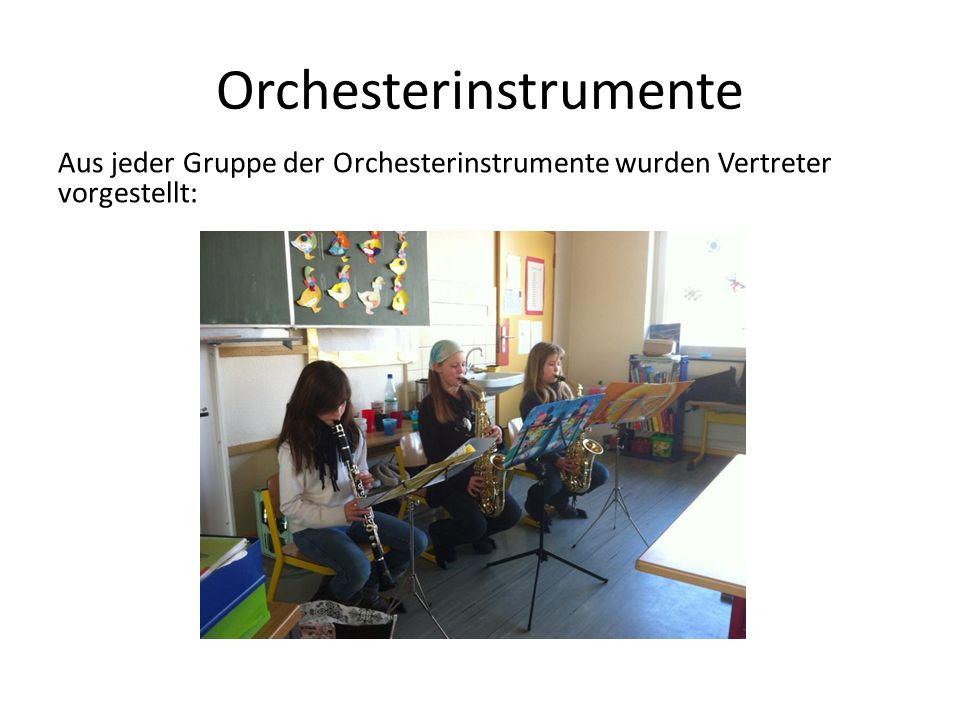 Referate Jedes Kind der Klasse wählte sich ein Instrument aus, das es der Klasse in Form eines Referates vorstellte. Recherchiert wurde in Musikbücher