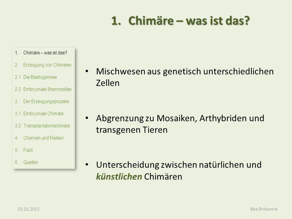 1.Chimäre – was ist das? Mischwesen aus genetisch unterschiedlichen Zellen Abgrenzung zu Mosaiken, Arthybriden und transgenen Tieren Unterscheidung zw
