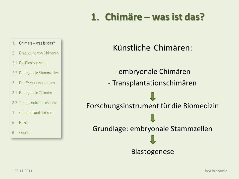 Künstliche Chimären: - embryonale Chimären - Transplantationschimären Forschungsinstrument für die Biomedizin Grundlage: embryonale Stammzellen Blastogenese 1.Chimäre – was ist das.