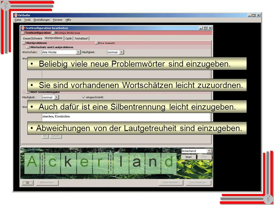 Textkonfiguration: Wortprobleme Beliebig viele neue Problemwörter sind einzugeben.