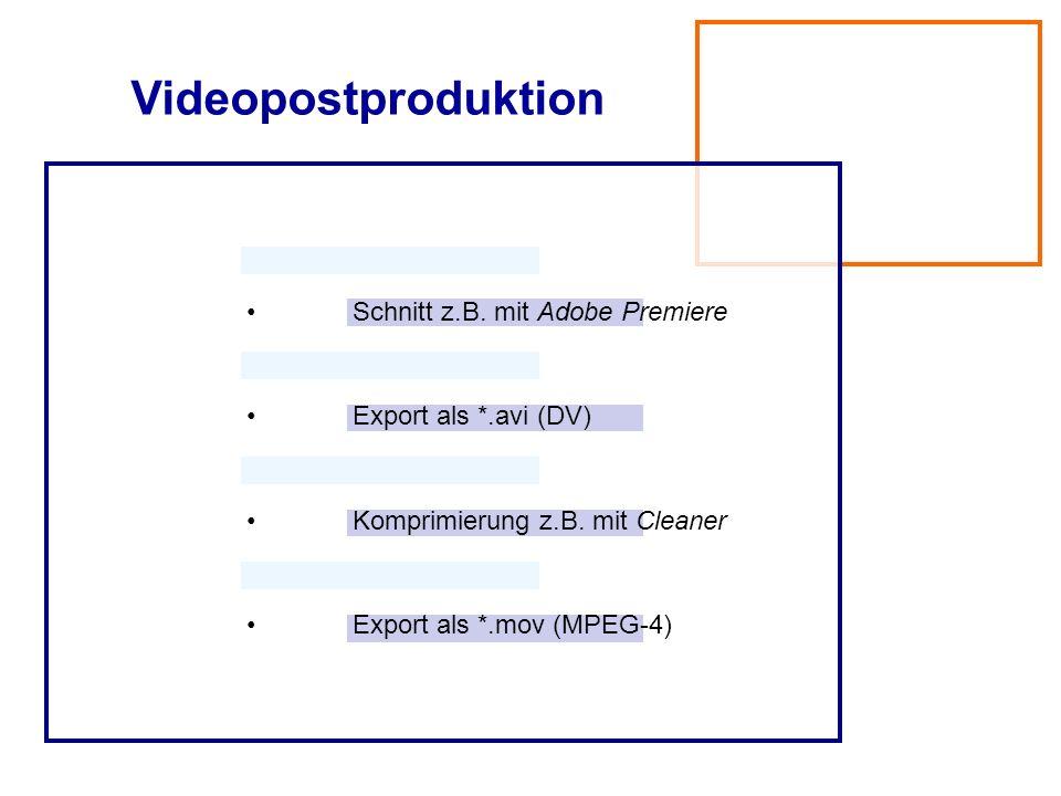Videoproduktion Aufnahme am selben Tag wie Panorama Aufnahme mit Drei-Chip-Mini-DV Tonaufnahme über EB-Mischer auf M-DV Ausleuchtung mit Dedo-Lights o