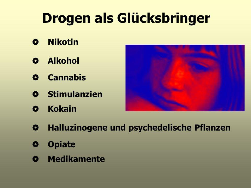 Drogen als Glücksbringer Nikotin Alkohol Cannabis Stimulanzien Kokain Halluzinogene und psychedelische Pflanzen Opiate Medikamente