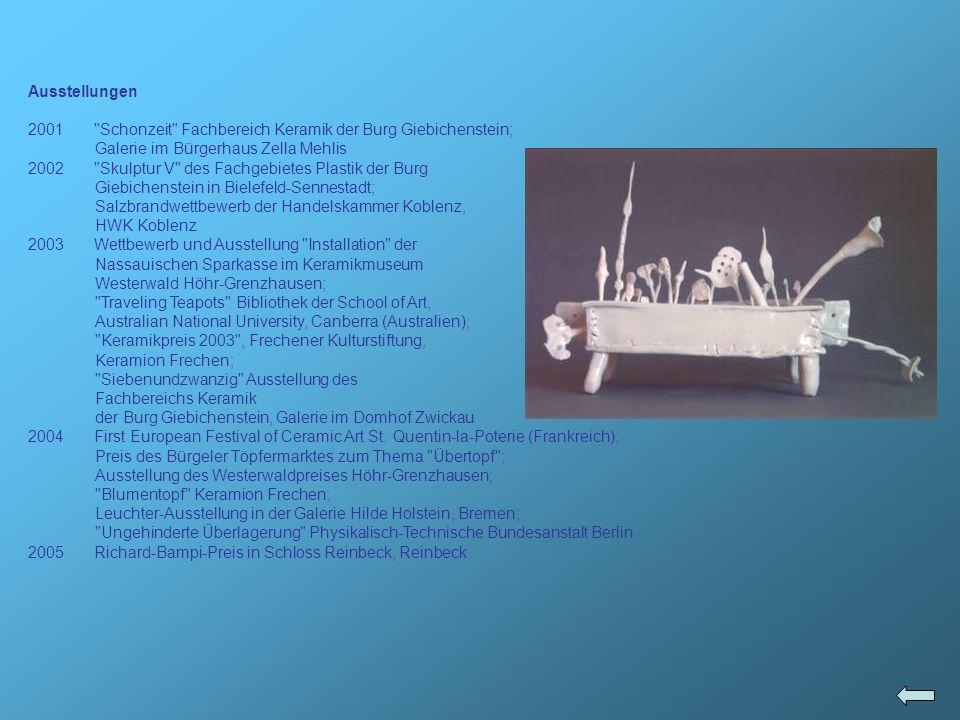 Ausstellungen 2001