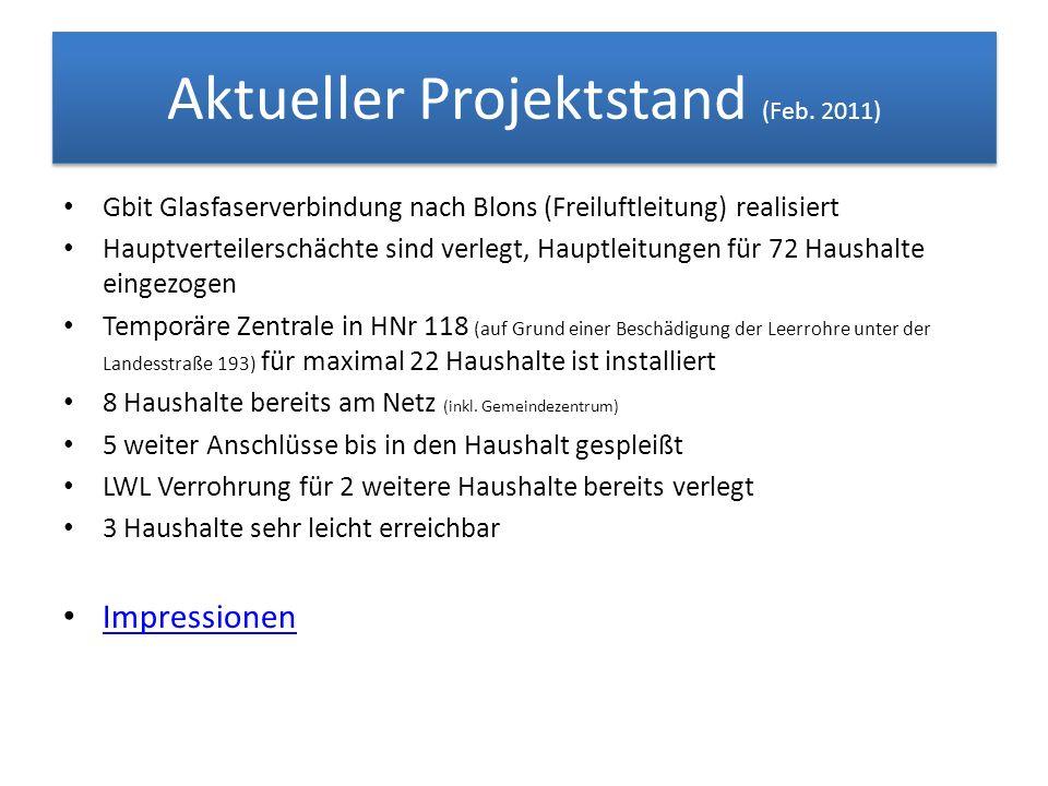 Aktueller Projektstand (Feb. 2011) Gbit Glasfaserverbindung nach Blons (Freiluftleitung) realisiert Hauptverteilerschächte sind verlegt, Hauptleitunge