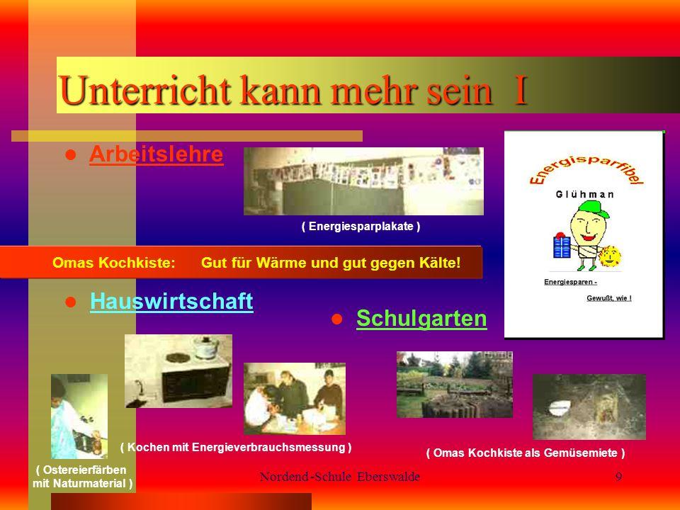 Nordend -Schule Eberswalde9 Unterricht kann mehr sein I Arbeitslehre Omas Kochkiste: Gut für Wärme und gut gegen Kälte.