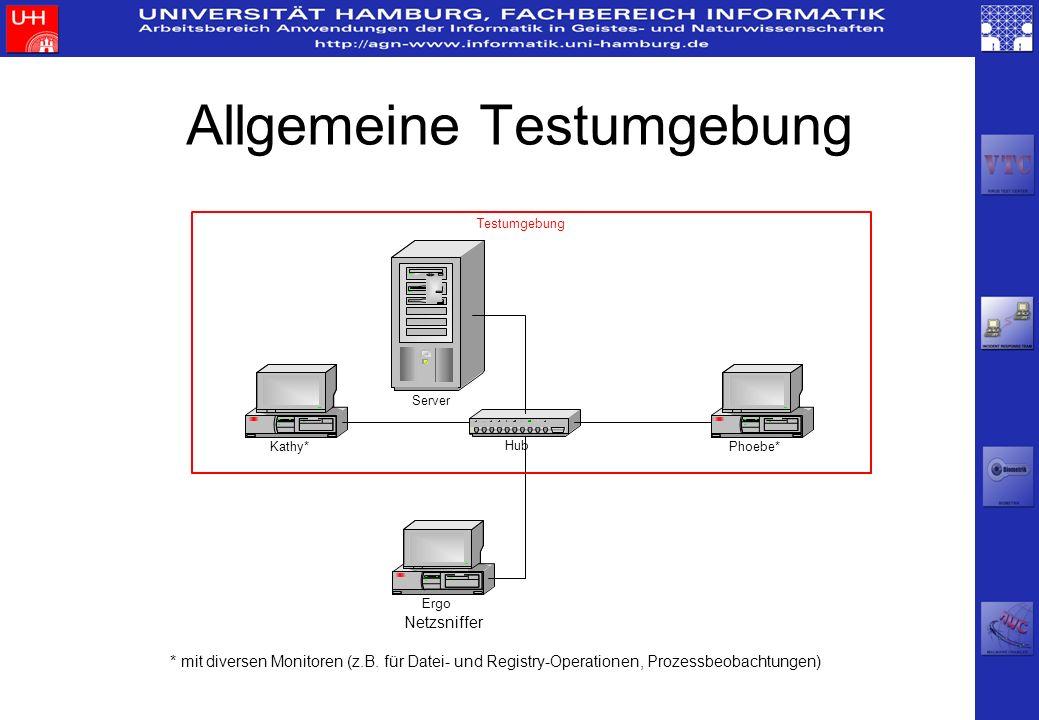Allgemeine Testumgebung * mit diversen Monitoren (z.B. für Datei- und Registry-Operationen, Prozessbeobachtungen)