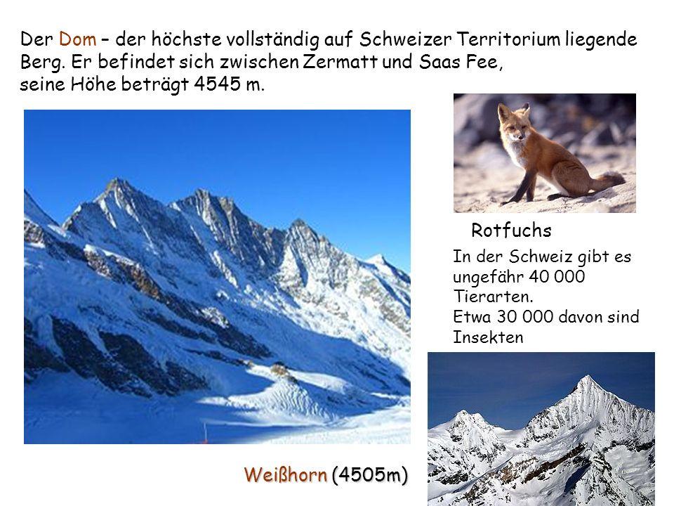 Weißhorn (4505m) Der Dom – der höchste vollständig auf Schweizer Territorium liegende Berg. Er befindet sich zwischen Zermatt und Saas Fee, seine Höhe