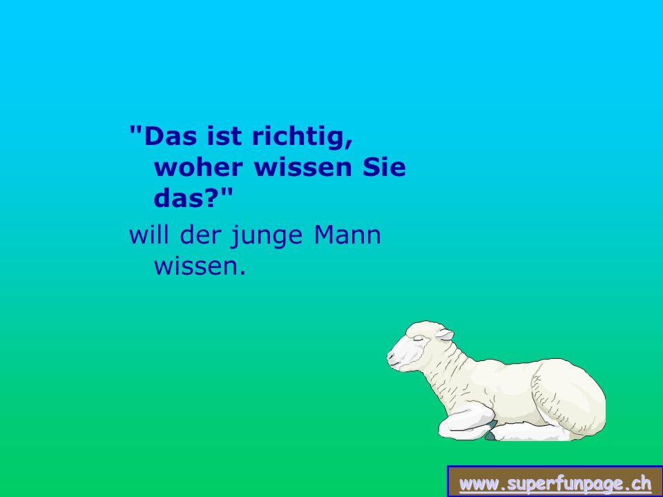 www.superfunpage.ch Der Schäfer sagt: Sie sind ein Unternehmensberater.