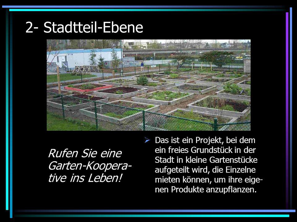 2- Stadtteil-Ebene Rufen Sie eine Garten-Koopera- tive ins Leben.