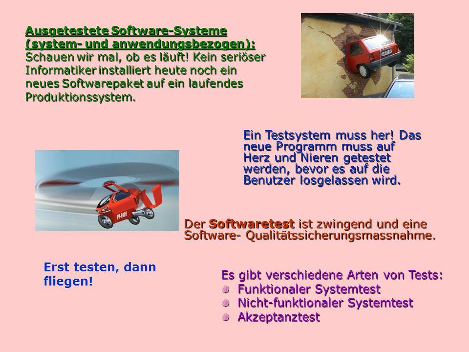 Ausgetestete Software-Systeme (system- und anwendungsbezogen): Schauen wir mal, ob es läuft.