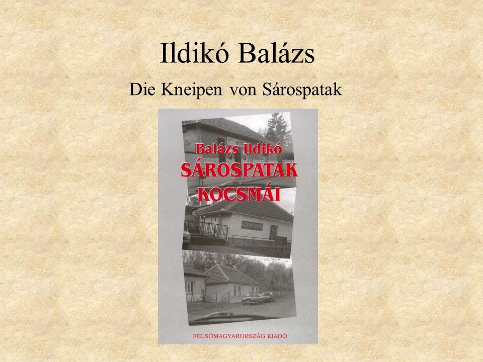 Ildikó Balázs Die Kneipen von Sárospatak