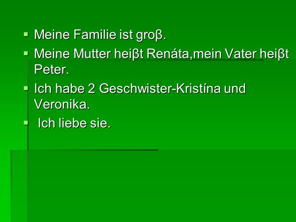 Meine Familie ist groβ. Meine Familie ist groβ. Meine Mutter heiβt Renáta,mein Vater heiβt Peter.