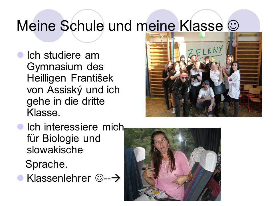 Meine Schule und meine Klasse Ich studiere am Gymnasium des Heilligen František von Assiský und ich gehe in die dritte Klasse. Ich interessiere mich f