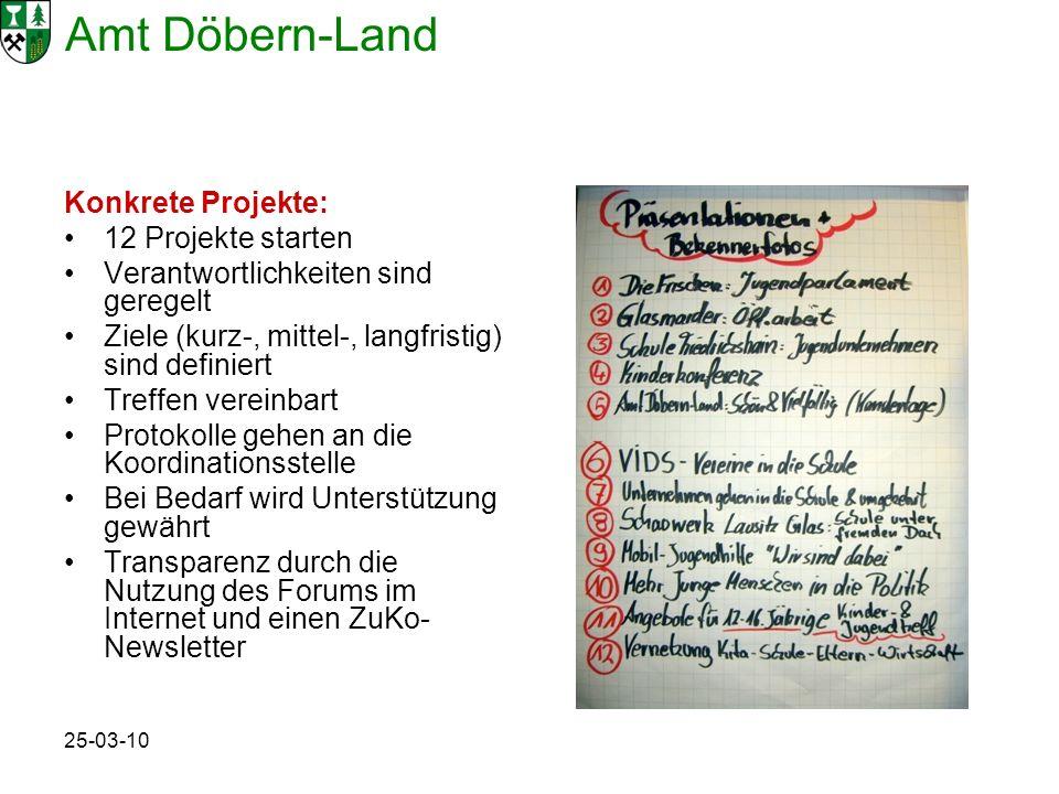 Amt Döbern-Land 25-03-10 Konkrete Projekte: 12 Projekte starten Verantwortlichkeiten sind geregelt Ziele (kurz-, mittel-, langfristig) sind definiert Treffen vereinbart Protokolle gehen an die Koordinationsstelle Bei Bedarf wird Unterstützung gewährt Transparenz durch die Nutzung des Forums im Internet und einen ZuKo- Newsletter