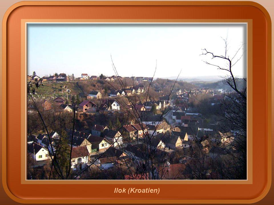 Vukovar (Kroatien)