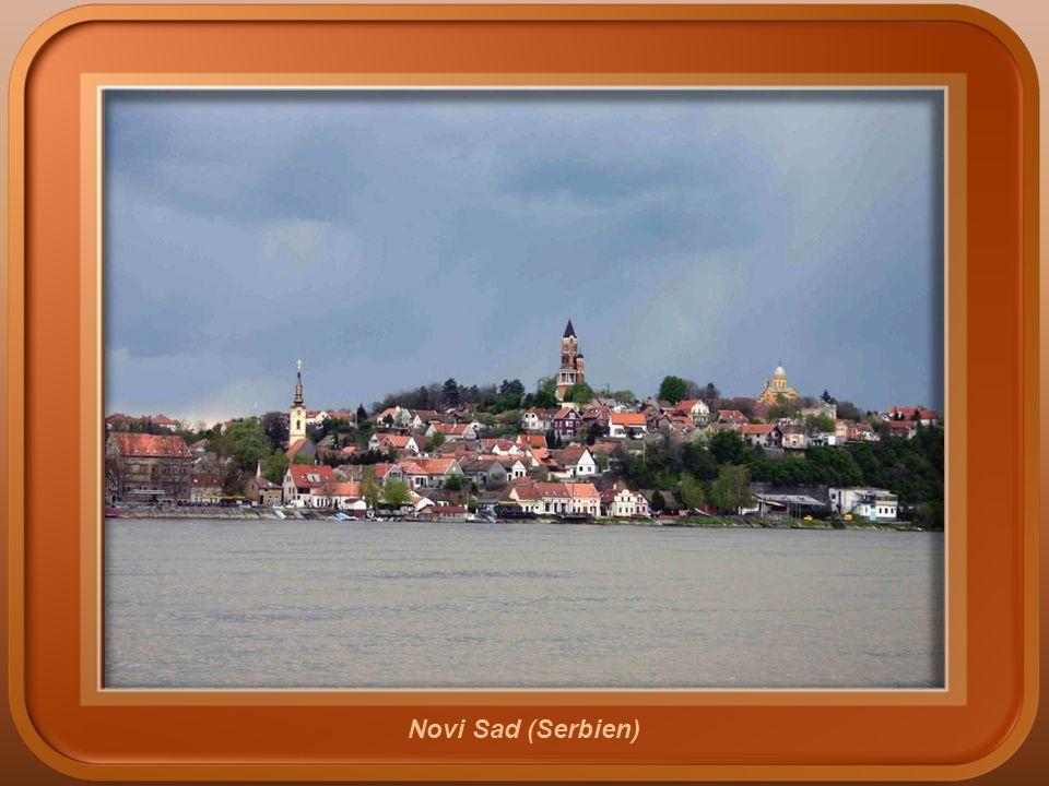 Ilok (Kroatien)