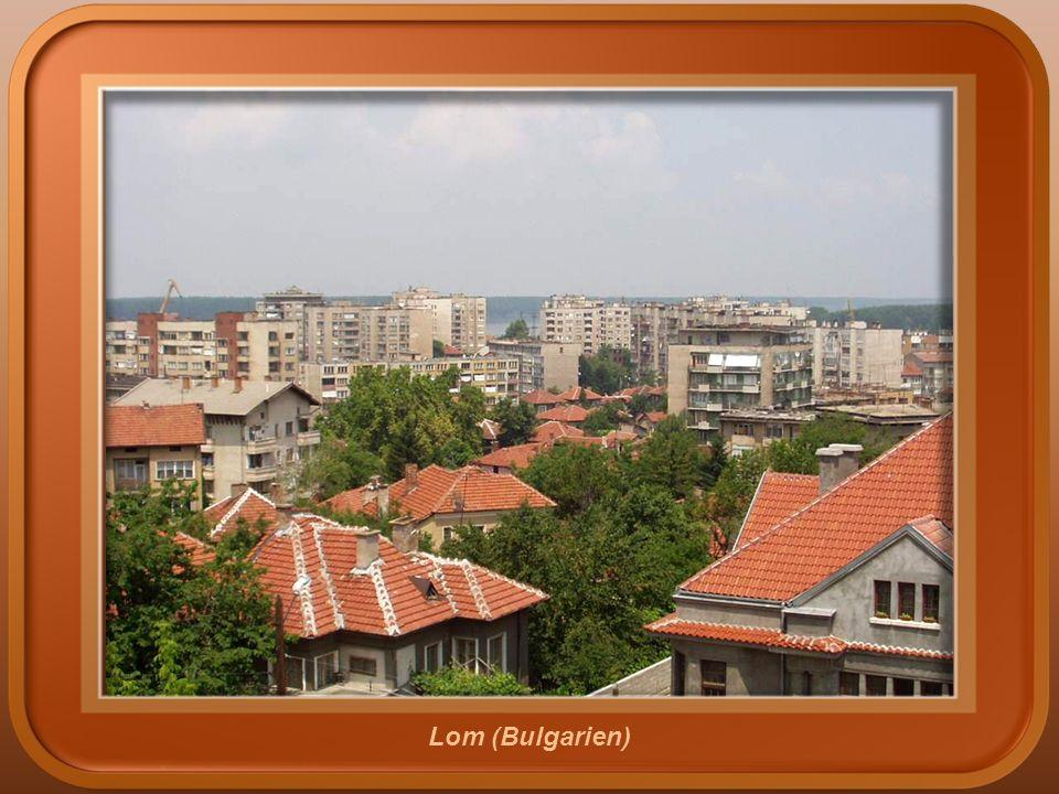 Vidin (Bulgarien)