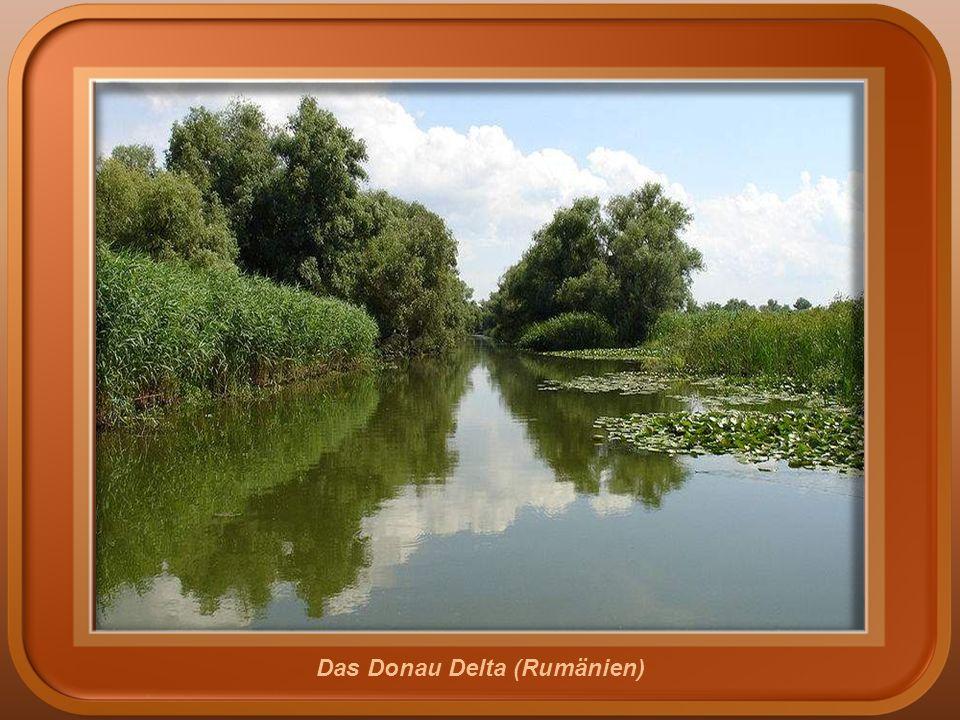 Sulina (Rumänien)