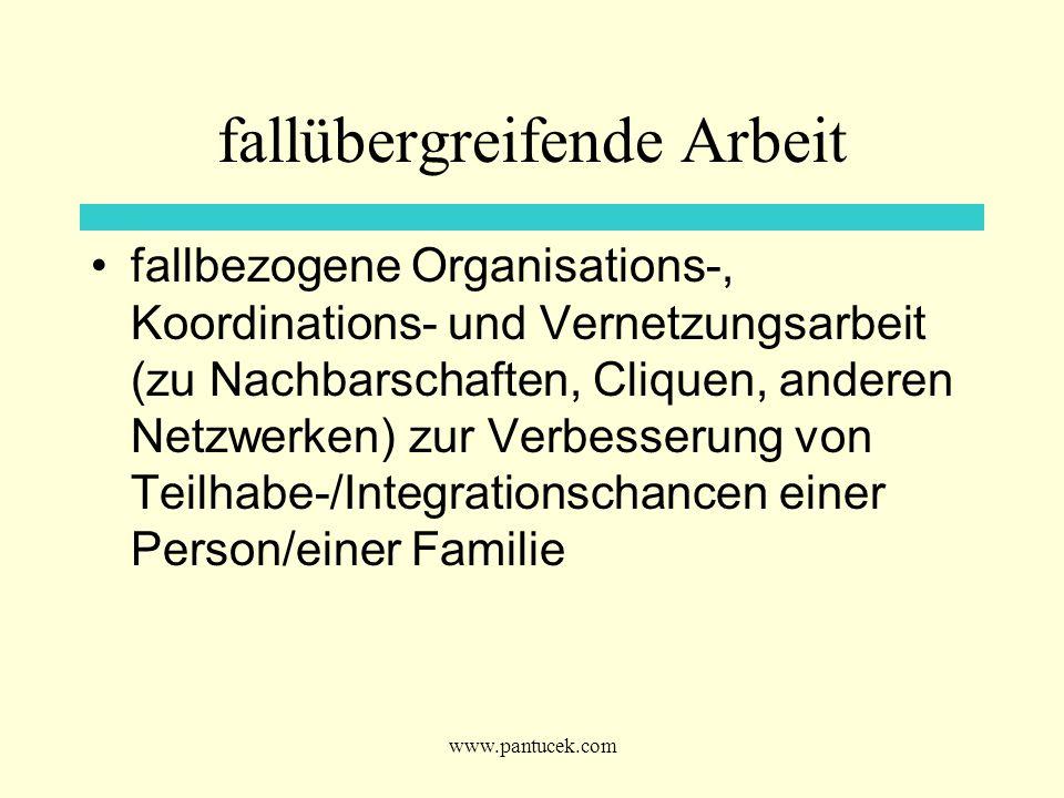 www.pantucek.com fallübergreifende Arbeit fallbezogene Organisations-, Koordinations- und Vernetzungsarbeit (zu Nachbarschaften, Cliquen, anderen Netz