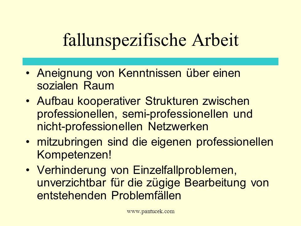 www.pantucek.com fallunspezifische Arbeit Aneignung von Kenntnissen über einen sozialen Raum Aufbau kooperativer Strukturen zwischen professionellen,