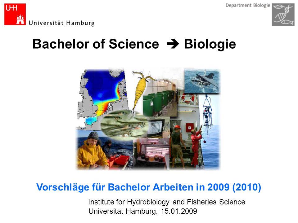 Bachelor of Science Biologie Institute for Hydrobiology and Fisheries Science Vorschläge für Bachelor Arbeiten in 2009 (2010) Universität Hamburg, 15.01.2009