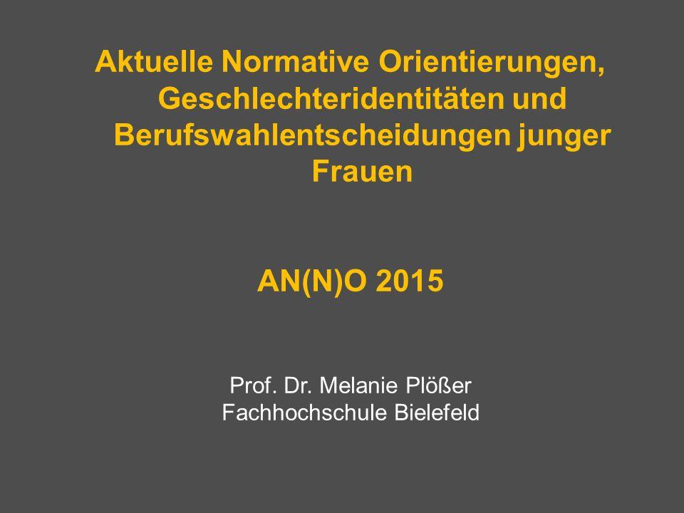 AN(N)O 2015 – Zum Forschungsprojekt Problemaufriss Forschungsinteresse Theoretische Rahmung Einblicke in die Datenauswertung
