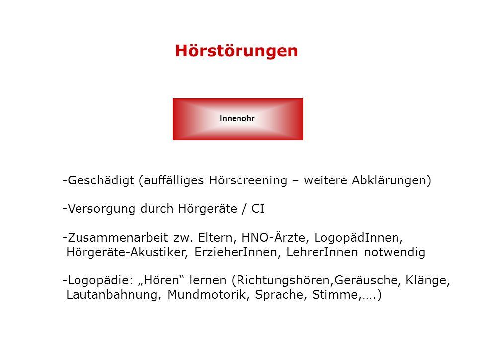 Hörstörungen Innenohr -Geschädigt (auffälliges Hörscreening – weitere Abklärungen) -Versorgung durch Hörgeräte / CI -Zusammenarbeit zw. Eltern, HNO-Är