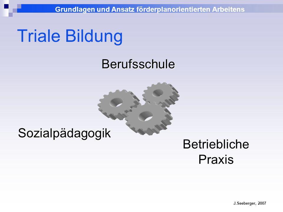 Grundlagen und Ansatz förderplanorientierten Arbeitens J.Seeberger, 2007 Triale Bildung Berufsschule Sozialpädagogik Betriebliche Praxis