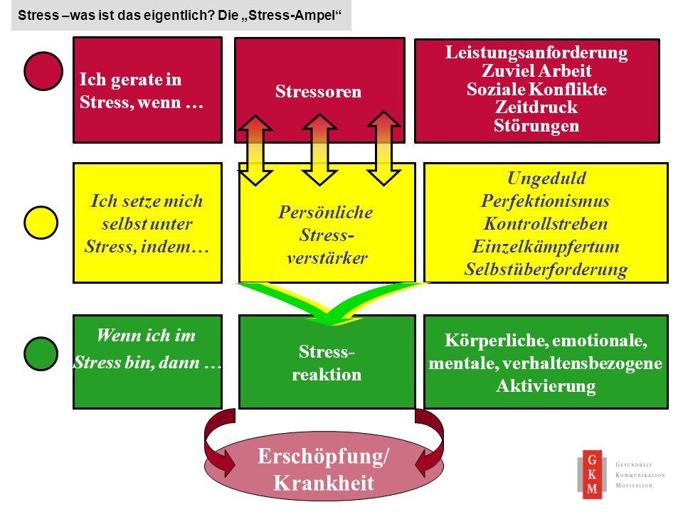 18 Persönliche Stress- verstärker Stress –was ist das eigentlich? Die Stress-Ampel Ich gerate in Stress, wenn … Stressoren Leistungsanforderung Zuviel