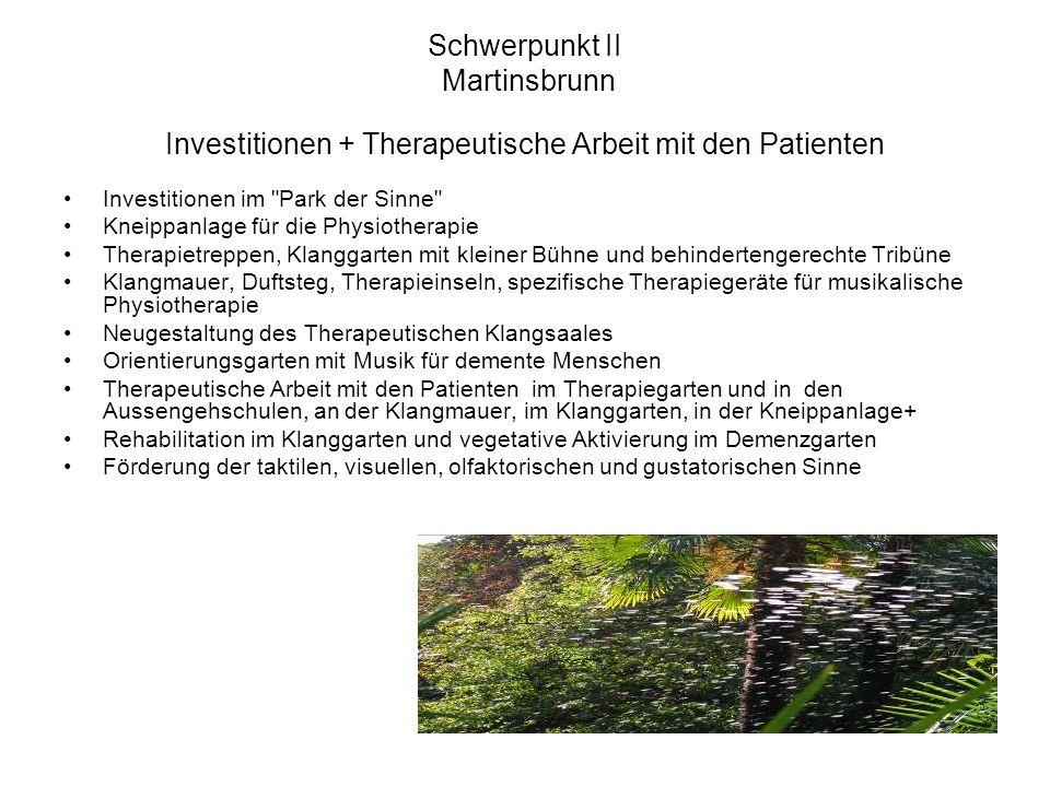 Schwerpunkt II Martinsbrunn Investitionen + Therapeutische Arbeit mit den Patienten Investitionen im